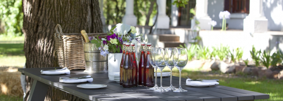 Rozendal Farmer's Punch is South Africa's Switchel