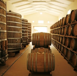 Vinegar cellar