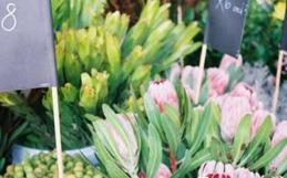 Our 5 Favourite Markets in Stellenbosch